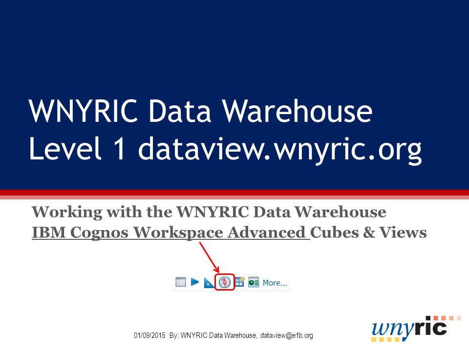 WNYRIC Data Warehouse Level 1 dataviewwnyricorg Working with the