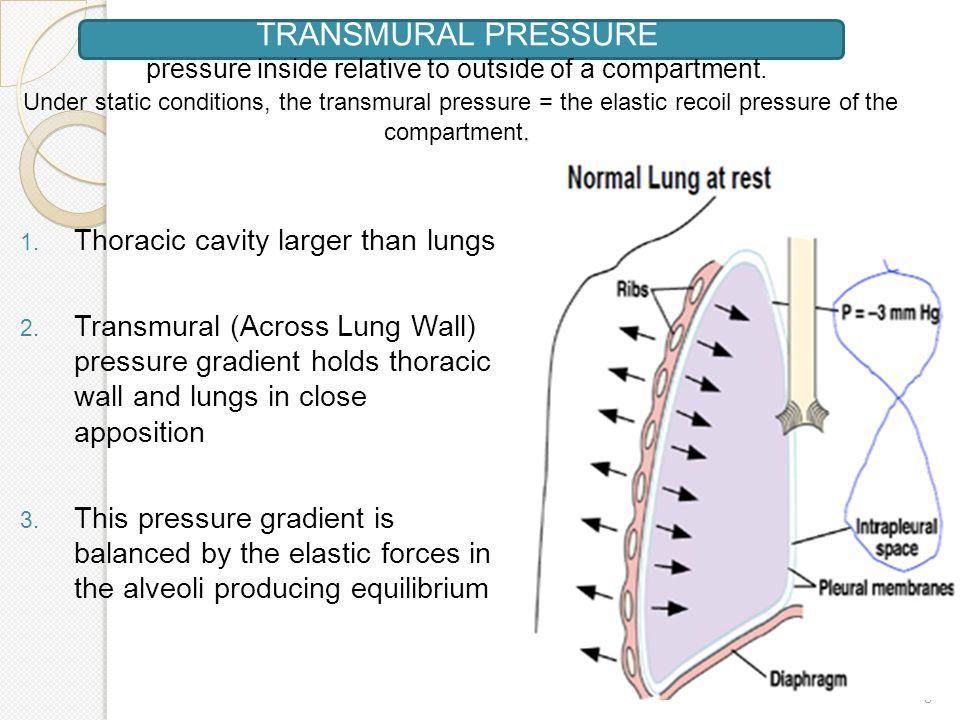 slide_8jpg (960×720) Systems Respiratory Pinterest - physician assistant job description