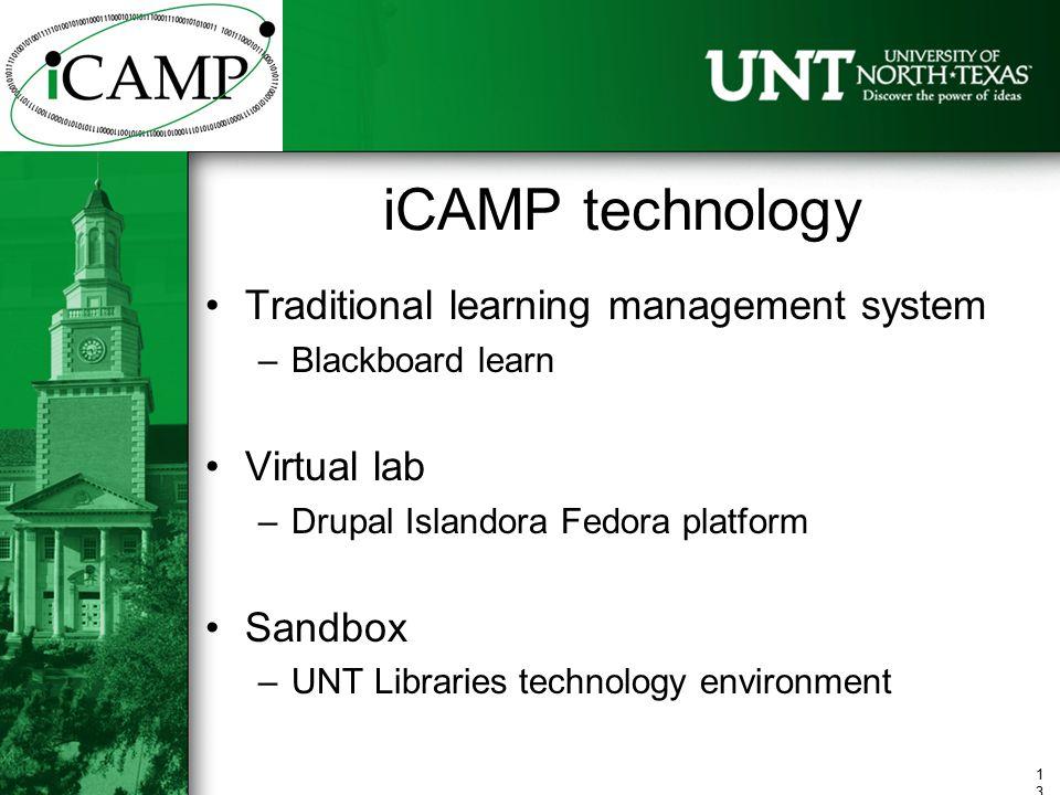 ICAMP Curate, Archive, Manage, Preserve William E Moen Associate