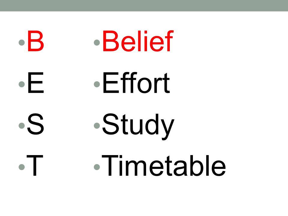 B E S T Belief Effort Study Timetable B E S T Belief Effort Study - study timetable