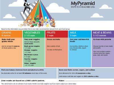 Ddler Food Pyramid