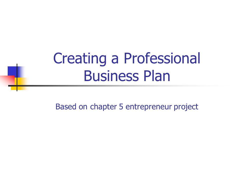 Creating a Professional Business Plan Based on chapter 5 - professional business plan
