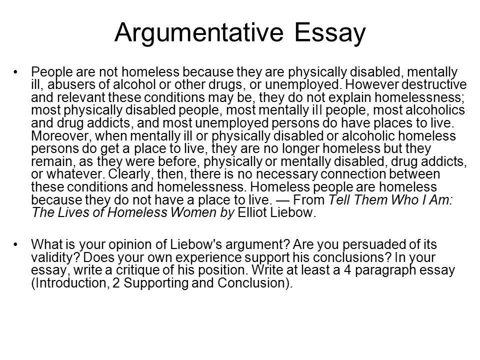 Argumentative Essay On Homelessness Mistyhamel