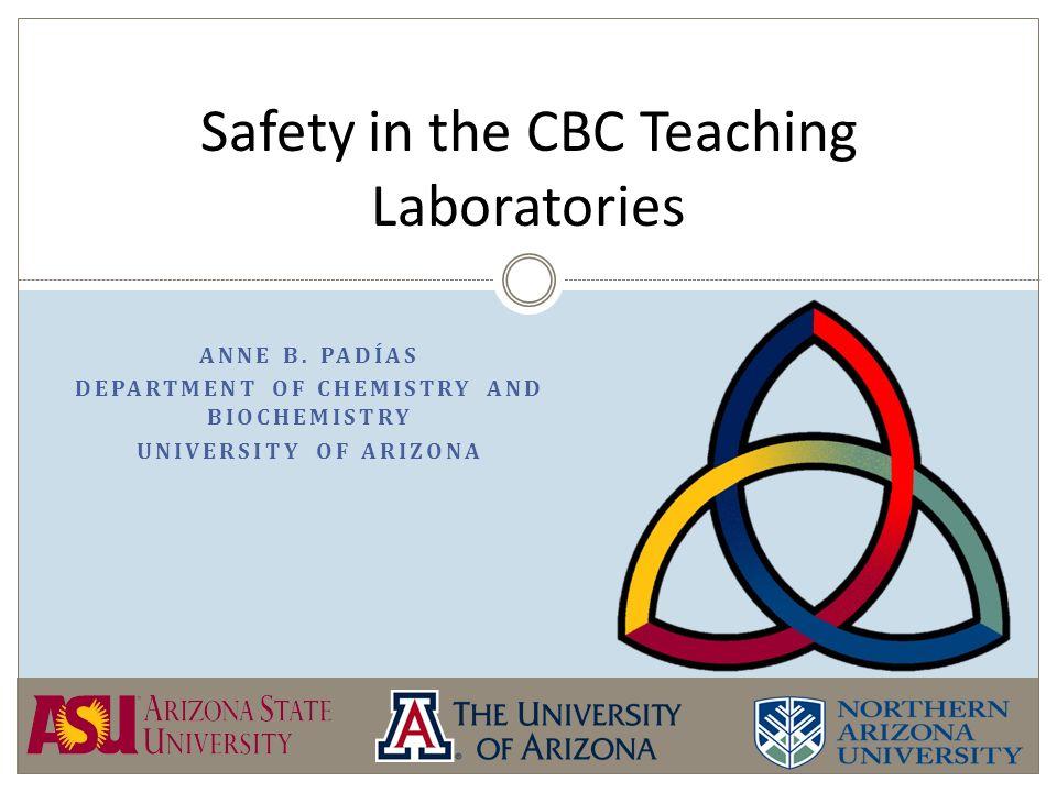 ANNE B PADÍAS DEPARTMENT OF CHEMISTRY AND BIOCHEMISTRY UNIVERSITY - chemistry safety