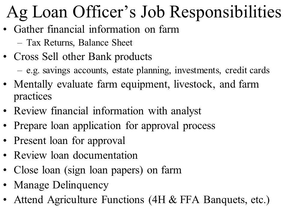ag loan officer sample resume   node2002-cvresume.paasprovider.com