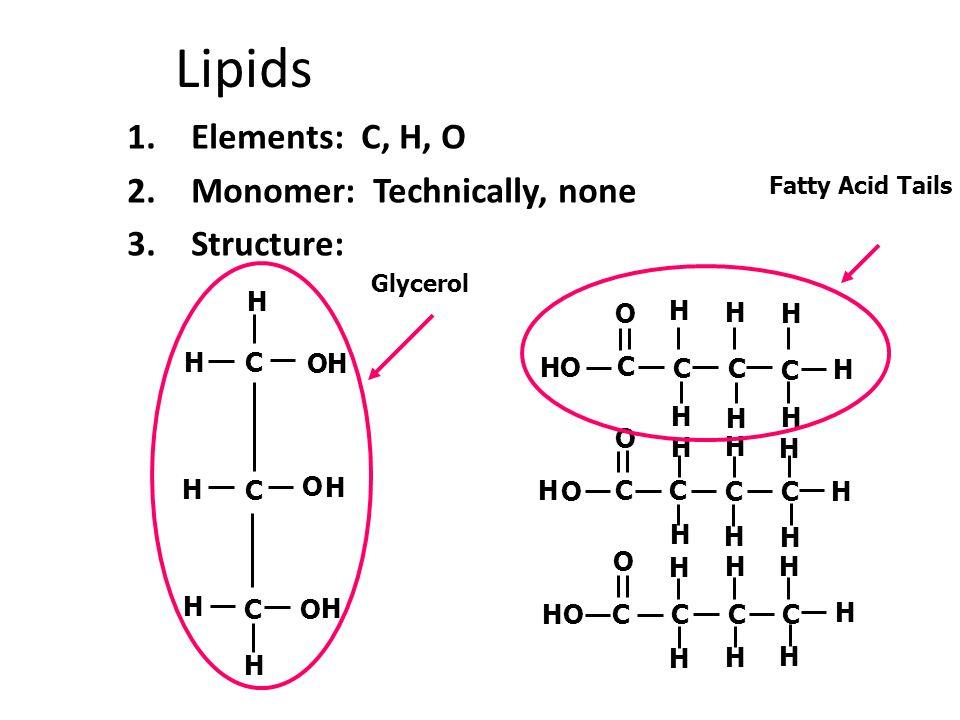 Carbohydrates Proteins Lipids Nucleic Acids Molecular Organization