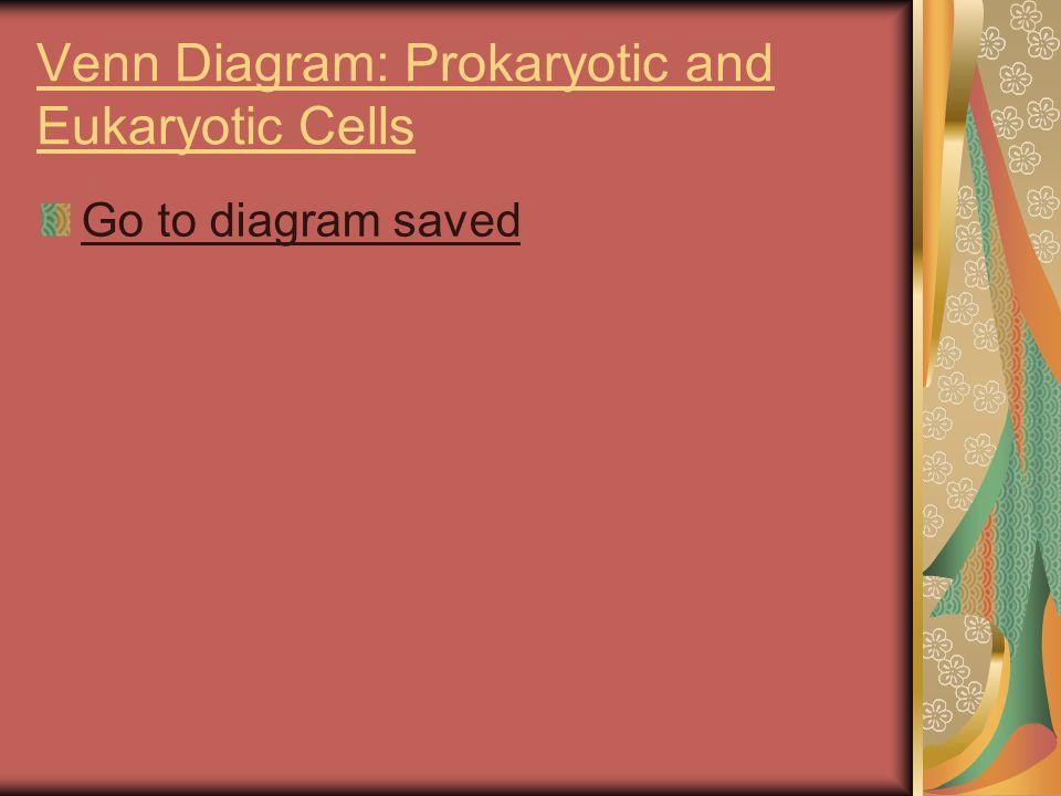 Cells Diversity, Size, Basic parts And Prokaryotes vs Eukaryotes