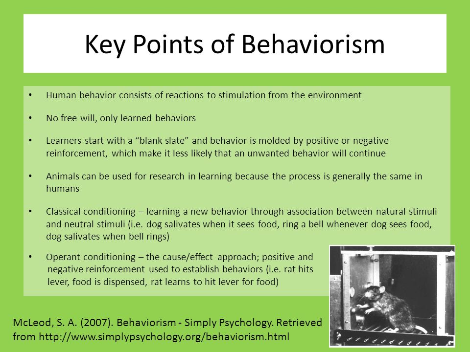 Behaviorism and free will College paper Academic Service qpessaycsts