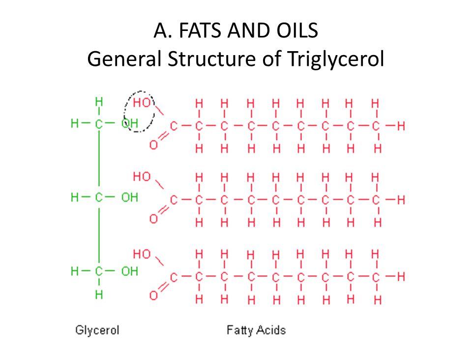 triglycerol - Nisatasj-plus