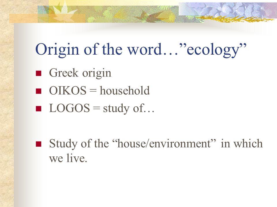 word origin - Jolivibramusic