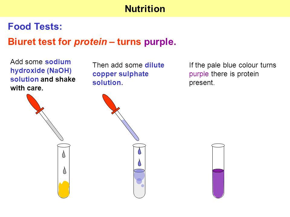 Protein Test Diagram - Wiring Diagrams