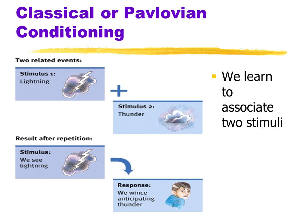 Preparedness theory classical conditioning Essay Help - examples of classical conditioning