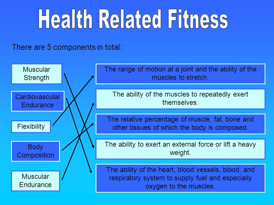 5 components of fitness - Tikirreitschule-pegasus - health components