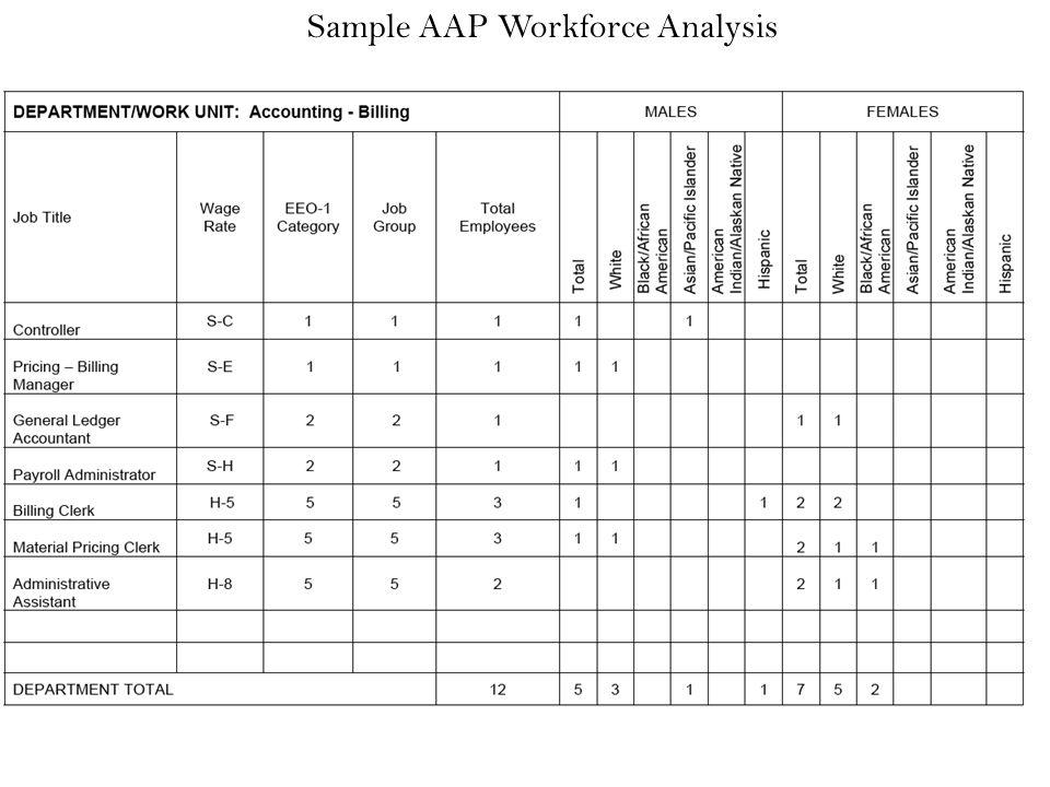 Sample Affirmative Action Plan Affirmative Action Plan Sample - affirmative action plan template
