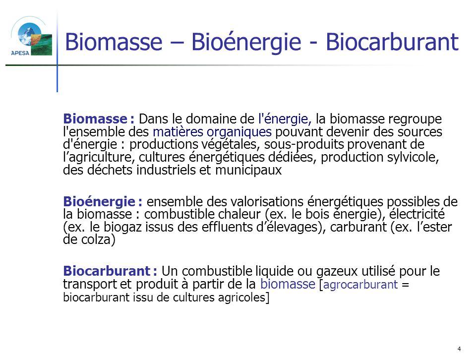 La Biomasse  définition et exploitation\/valorisation Géo 216 - technical evaluation