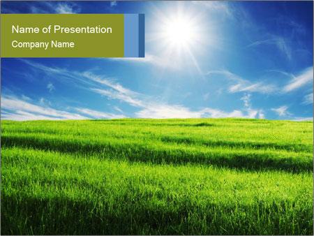 Summer Grassland PowerPoint Template, Backgrounds  Google Slides