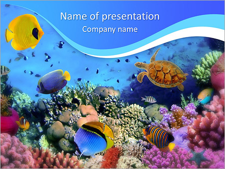 Ocean Life PowerPoint Template, Backgrounds  Google Slides - ID