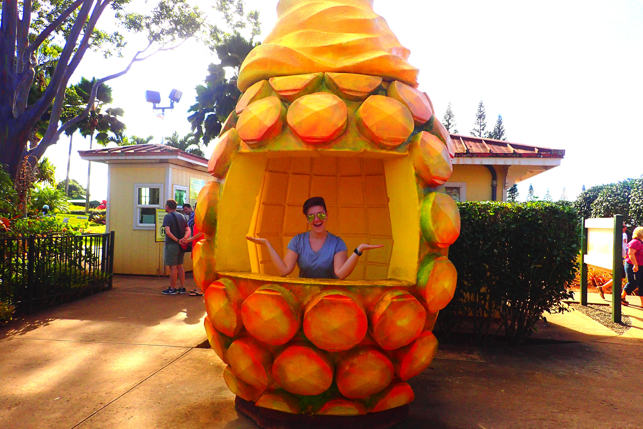 The World S Largest Pineapple Maze At Hawaii S Dole Plantation Deviating The Norm