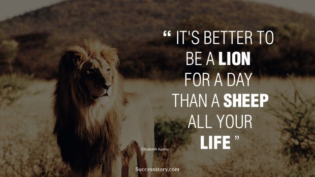 Happiness Quotes Wallpaper Iphone It S Better To Be A Lion For A Day Than A Sheep All Your Life