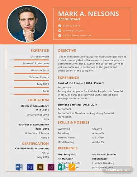 FREE Experienced Accountant Resume Format Download 316+ Resume