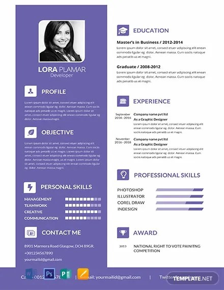 FREE Professional Developer Resume Template in Photoshop, Word
