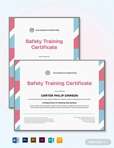 15+ FREE Training Certificate Templates Download Ready-Made