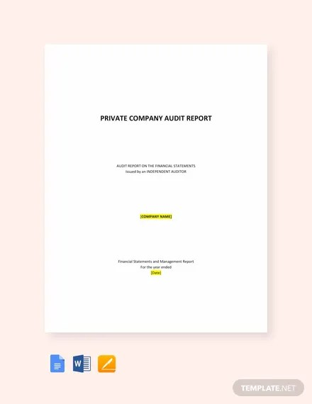 Private Company Audit Report Sample Template in Microsoft Word