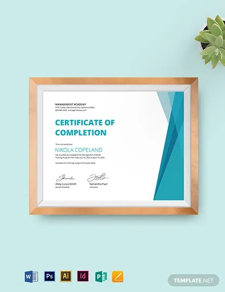 FREE Completion of Training Certificate Template Download 435+