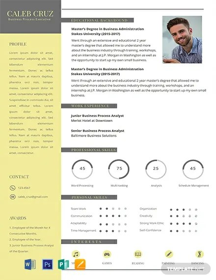 10+ FREE Resume Templates Download Ready-Made Templatenet
