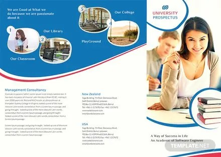 Free University Tri-Fold Brochure Adobe Photoshop, Illustrator