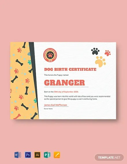 15+ FREE Birth Certificate Templates Download Ready-Made