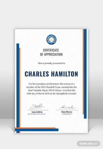 Free Sports Appreciation Certificate Template in Adobe Photoshop - free appreciation certificate templates