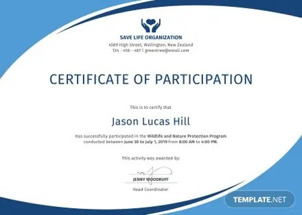Free Participation Certificate Templates Download Ready-Made