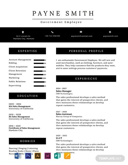 20+ FREE Professional Resume Templates Download Ready-Made