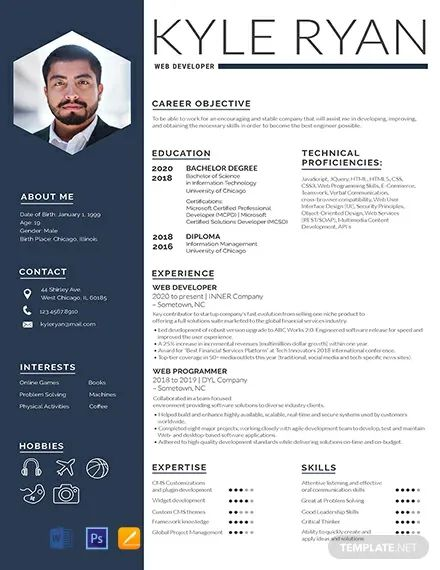 web designer cv template download