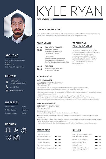Web Developer Resume Template in Adobe Photoshop Templatenet - web resume