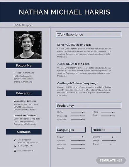 160+ FREE Resume Templates Download Ready-Made Templatenet