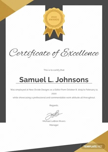 Free Training Excellence Award Certificate Template Free Templates
