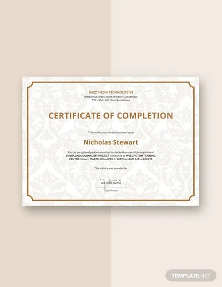 FREE Project Completion Certificate Template Download 435+