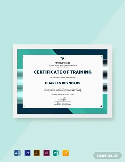 FREE Company Training Certificate Template Download 435+