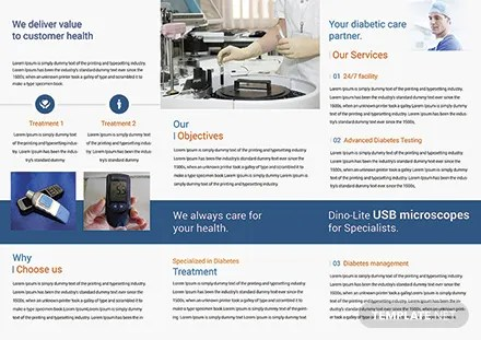 Diabetes Brochure Template diabetes brochure pdf investation 10 e