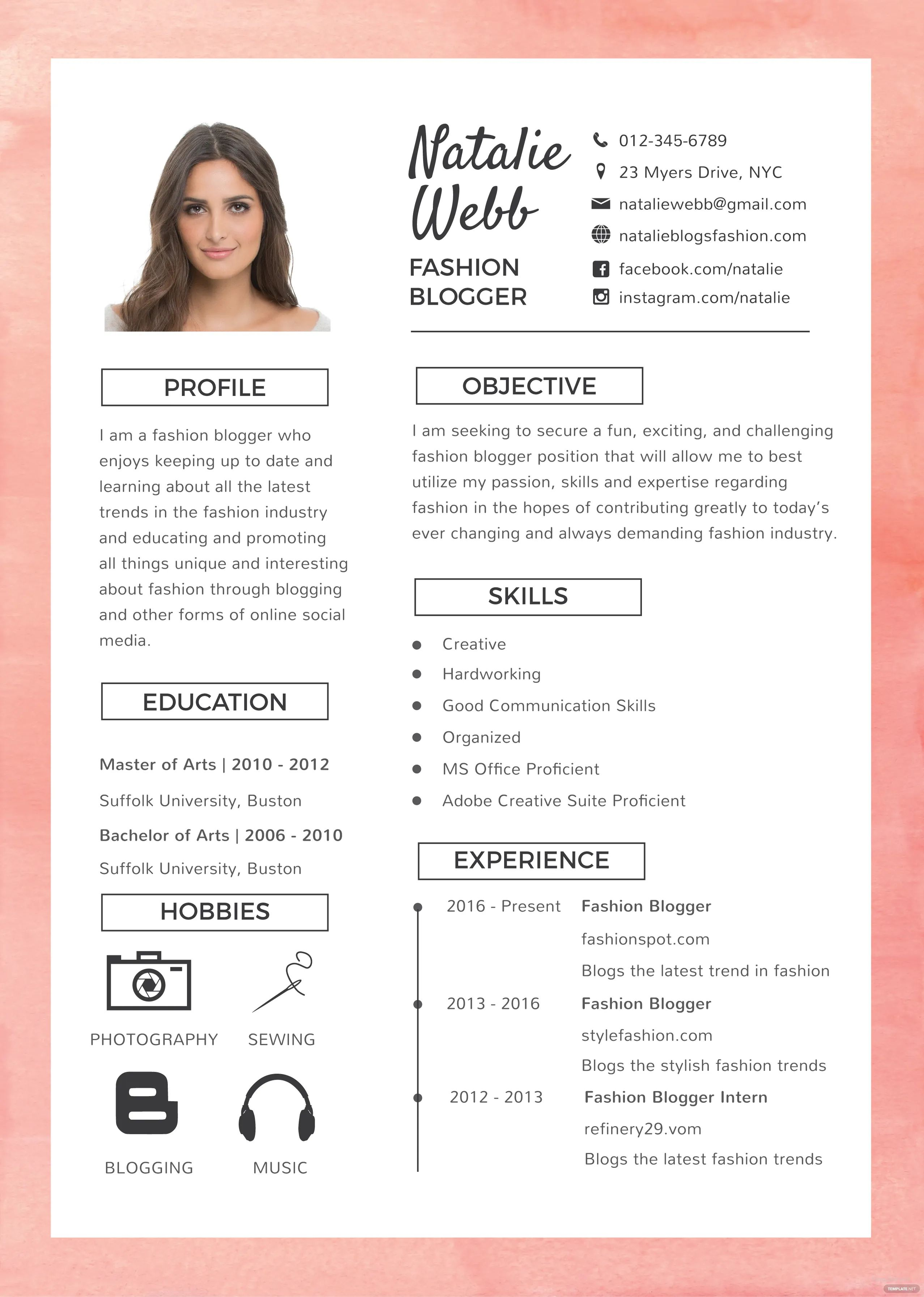 blogger resume example