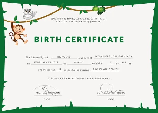 Birth Certificate Template - 44+ Free Word, PDF, PSD Format Download - Certificate Of Birth Template
