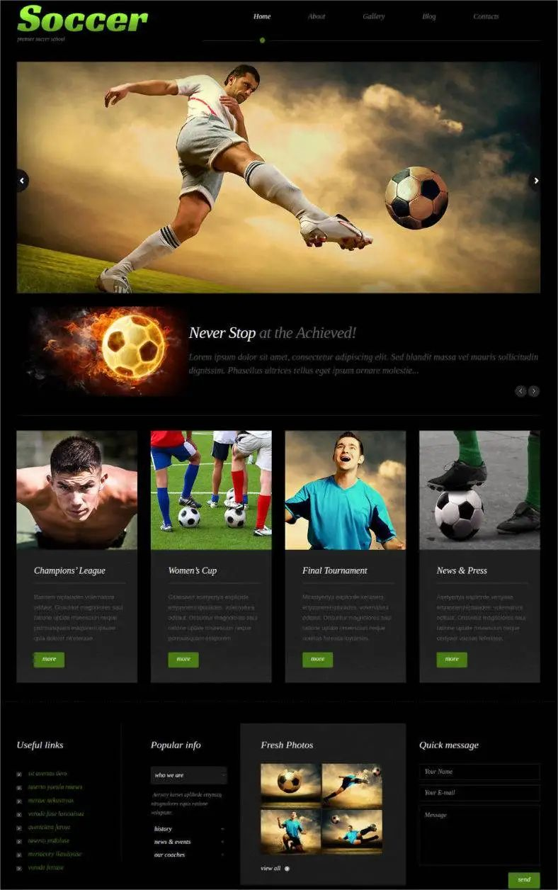 wordpress sports theme