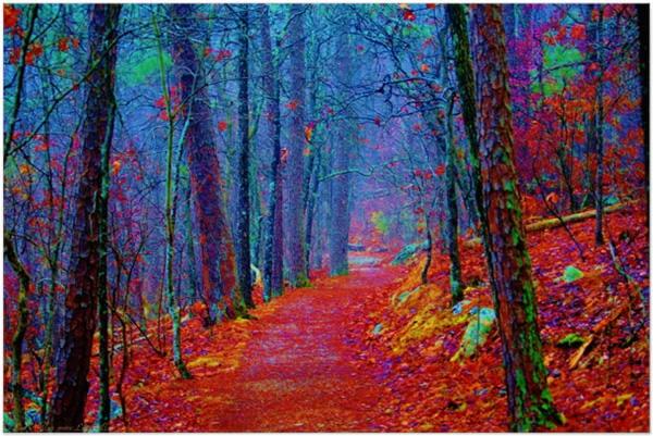 Oil Painting Designs Free Premium Templates