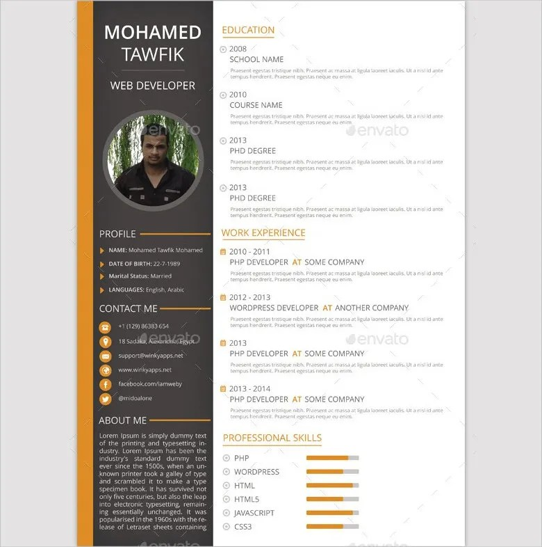 contemporary resume formats - Contemporary Resume