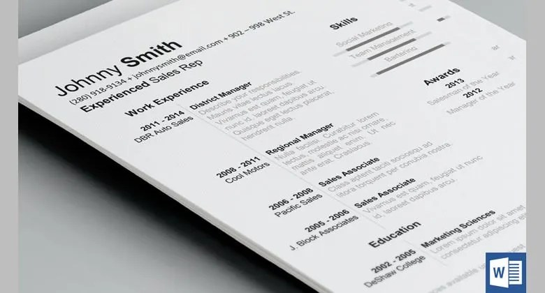 19+ Resume Examples - PDF, DOC Free  Premium Templates - best it resumes examples