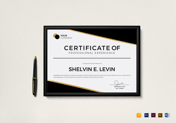 83+ Creative Custom Certificate Word, PSD, AI Design Templates