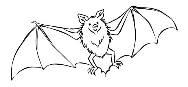 Bat Template - Animal Templates Free \ Premium Templates - bat template