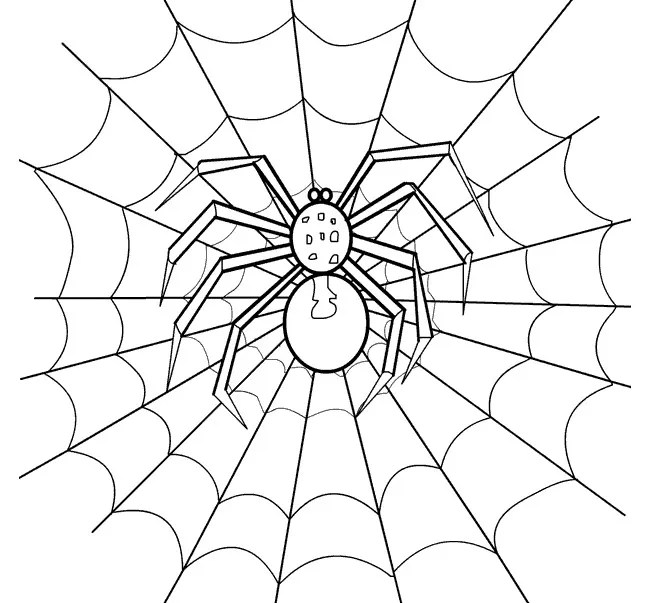 Spider Shape Template - 55+ Crafts  Colouring Pages Free